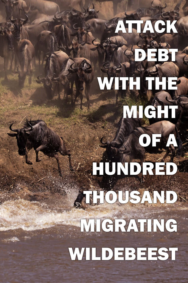 When paying off debt, attack debt with the might of 100,000 Wildebeest